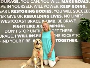 Golden Retriever with prosthetic leg, sitting with owner